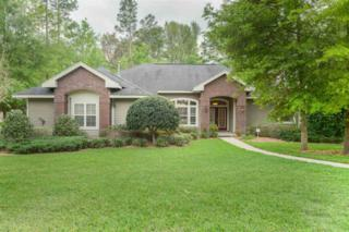 10309 SW 32ND Avenue, Gainesville, FL 32608 (MLS #403517) :: Thomas Group Realty