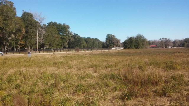 26203 NW 166th Avenue, High Springs, FL 32643 (MLS #400506) :: Bosshardt Realty