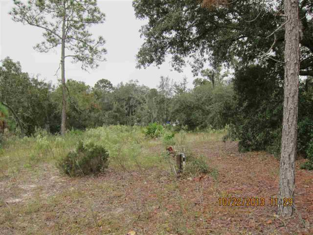 TBD NE 69 Lane, Williston, FL 32696 (MLS #400834) :: Florida Homes Realty & Mortgage