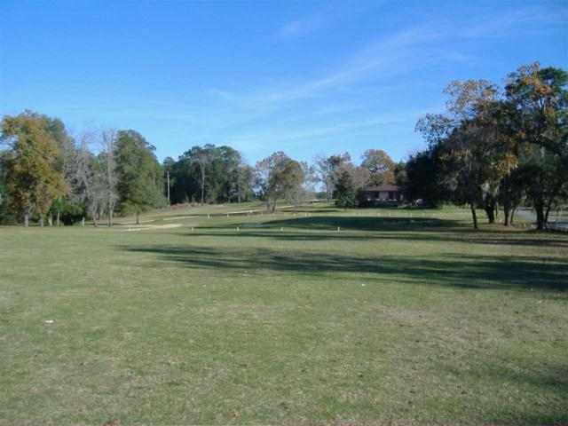 Keystone Land Trust No. 42, Keystone Heights, FL 32656 (MLS #401123) :: Abraham Agape Group
