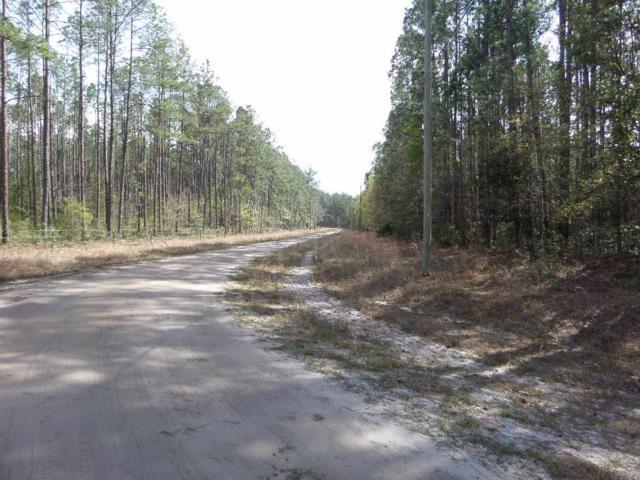 6030 Klare Drive, Keystone Heights, FL 32656 (MLS #404066) :: Pepine Realty