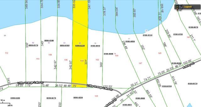 104 Little Orange Lake Drive, Hawthorne, FL 32640 (MLS #404401) :: Florida Homes Realty & Mortgage