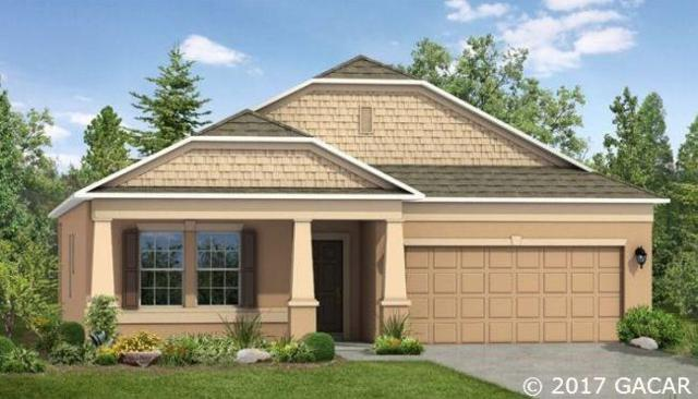 944 NW 252nd Drive, Newberry, FL 32669 (MLS #406062) :: Bosshardt Realty