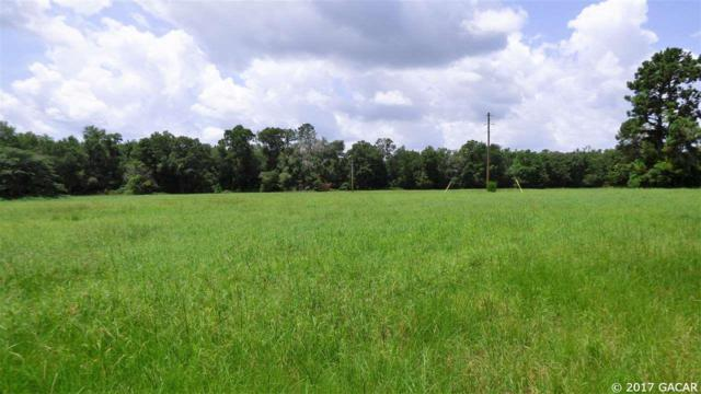 12126 NW 171ST Road, Alachua, FL 32615 (MLS #406838) :: OurTown Group
