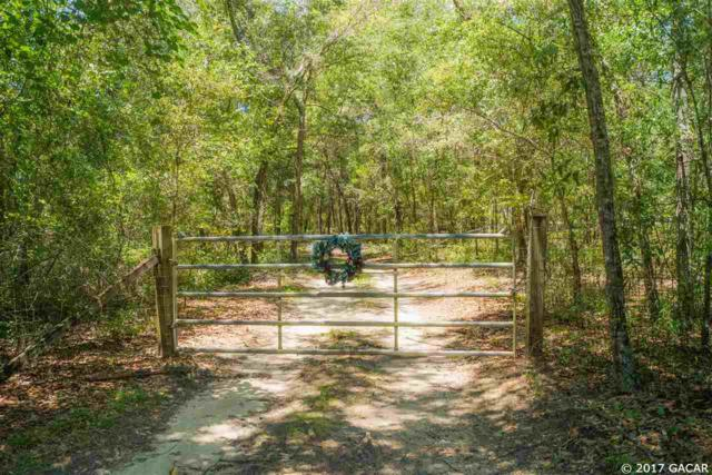 7631 NE 138TH Lane, Newberry, FL 32669 (MLS #407467) :: Florida Homes Realty & Mortgage