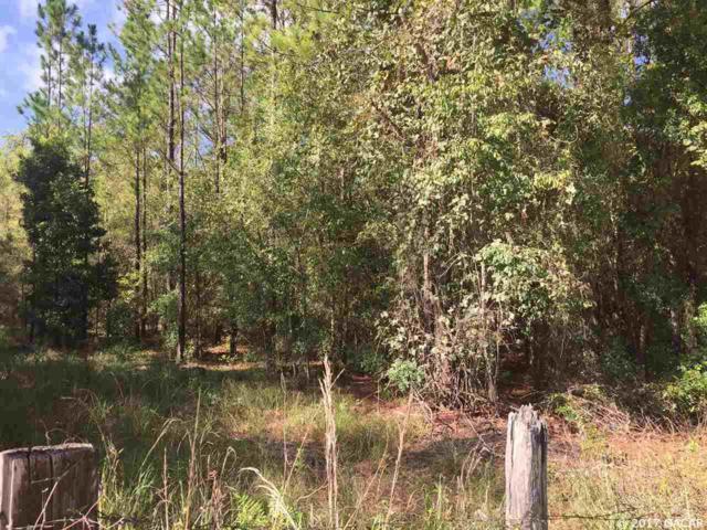 0000 NE 80 Avenue, High Springs, FL 32643 (MLS #408047) :: Florida Homes Realty & Mortgage