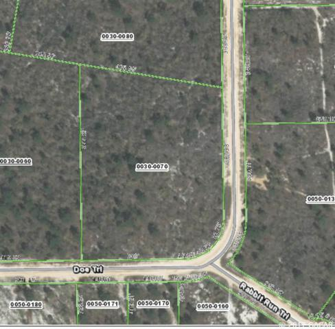 00 Doe Trail, Hawthorne, FL 32640 (MLS #408462) :: Florida Homes Realty & Mortgage