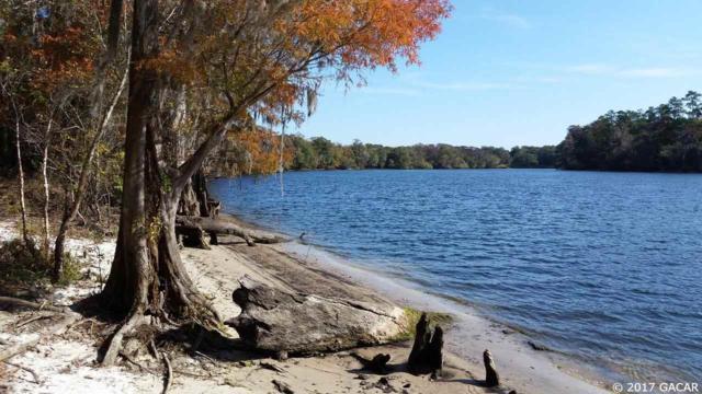 Suwannee River Springs