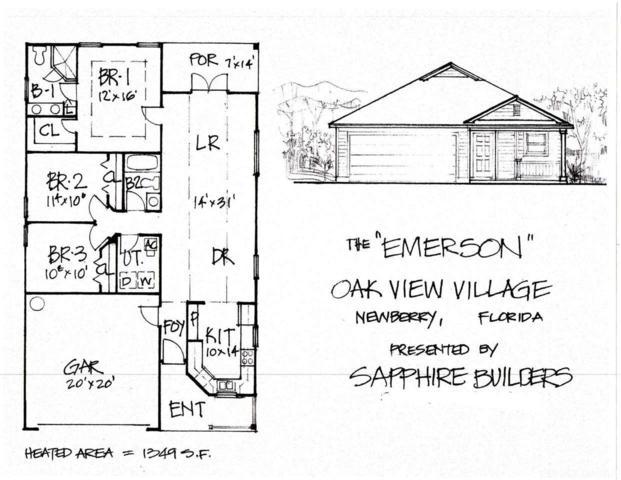 25112 SW 9th Lane, Newberry, FL 32669 (MLS #409044) :: Thomas Group Realty