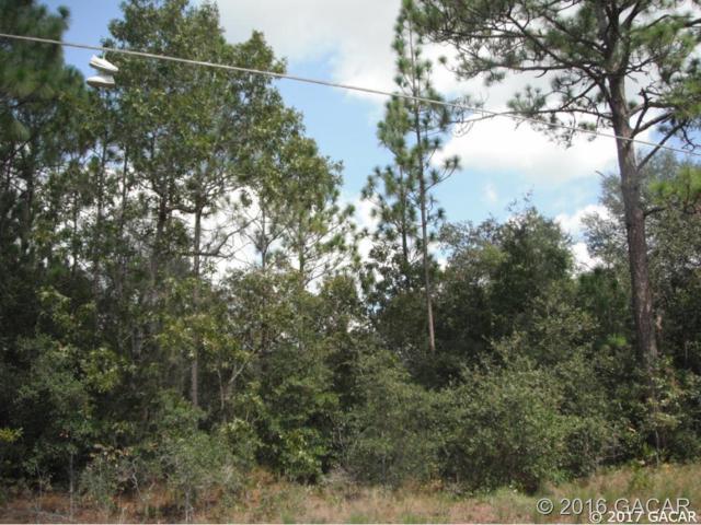 5629 Silver Sands Circle, Keystone Heights, FL 32656 (MLS #409116) :: Florida Homes Realty & Mortgage