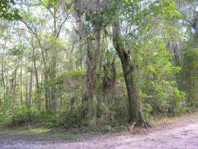 000 NW 31st Avenue, Gainesville, FL 32606 (MLS #409130) :: Thomas Group Realty
