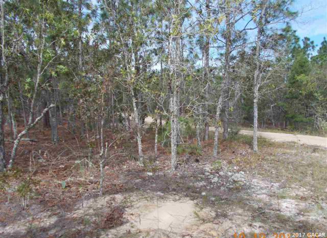 7210 Davidson Street, Keystone Heights, FL 32656 (MLS #409214) :: Florida Homes Realty & Mortgage