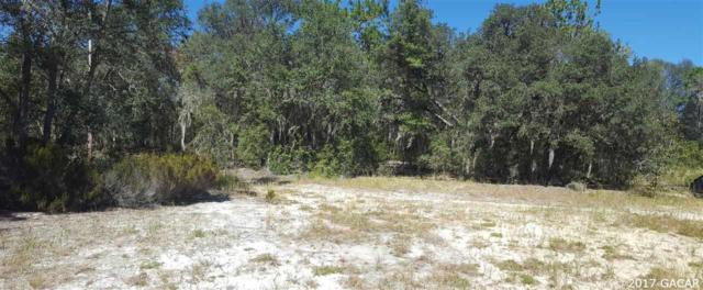 000 Viola Drive, Hawthorne, FL 32640 (MLS #409418) :: Florida Homes Realty & Mortgage