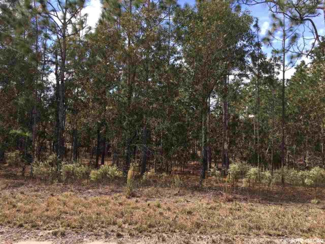 TBD SE 146th Terrace, Williston, FL 32696 (MLS #409450) :: Florida Homes Realty & Mortgage