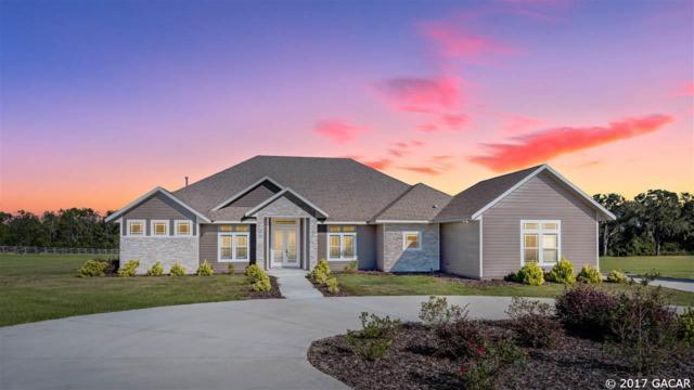 4347 NW 159TH Drive, Newberry, FL 32669 (MLS #409659) :: Bosshardt Realty