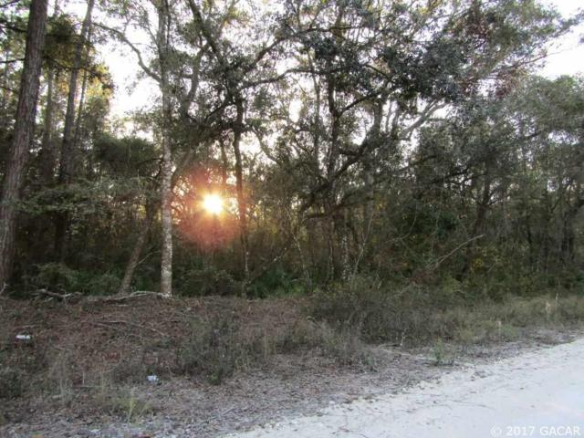 Lot 33 NE 743rd Street, Old Town, FL 32680 (MLS #409893) :: Thomas Group Realty