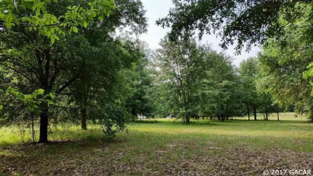 673 SW Hawk Lane, Ft. White, FL 32038 (MLS #409946) :: Thomas Group Realty
