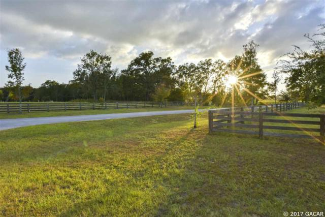 Lot 1 9449 NW 208th Terrace, Alachua, FL 32615 (MLS #409979) :: Thomas Group Realty