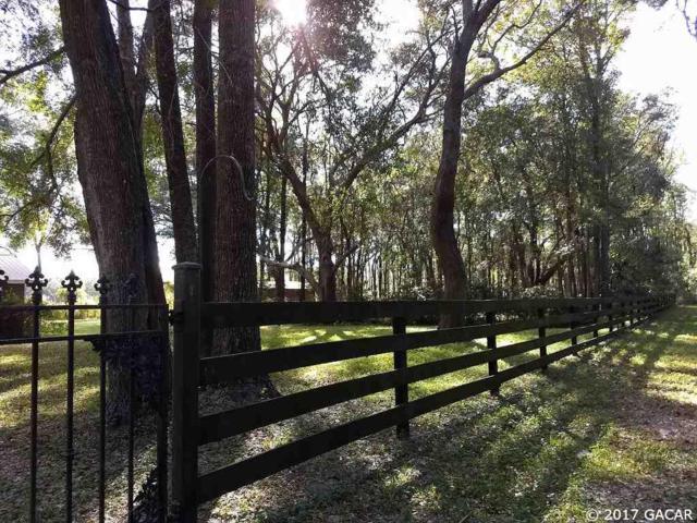 29415 NW 142 Avenue, High Springs, FL 32643 (MLS #410053) :: Bosshardt Realty