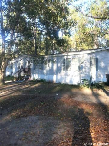 11219 SW 282nd Street, Newberry, FL 32669 (MLS #410190) :: Thomas Group Realty