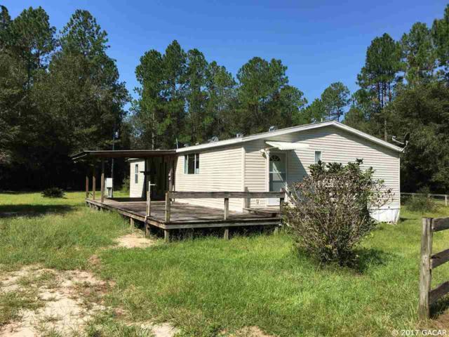 16817 NW 110th Avenue, Alachua, FL 32615 (MLS #410304) :: Thomas Group Realty