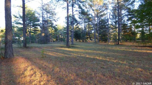 0000 NW 282 Lane, Alachua, FL 32615 (MLS #410478) :: Bosshardt Realty