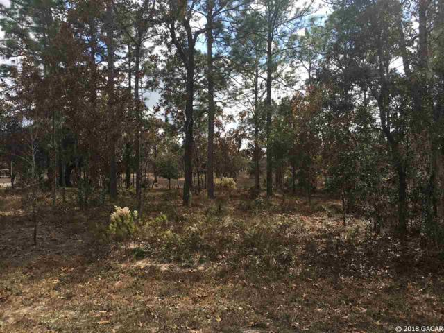 TBD NE 10 Circle, Williston, FL 32696 (MLS #411579) :: Thomas Group Realty