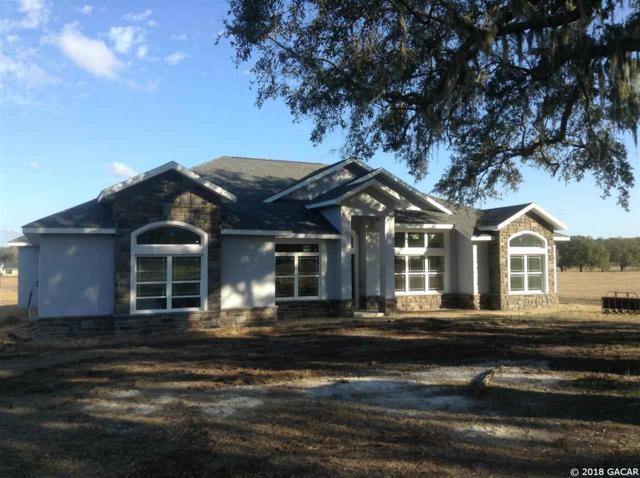 1965 NW 79th Loop, Ocala, FL 34475 (MLS #411865) :: Thomas Group Realty