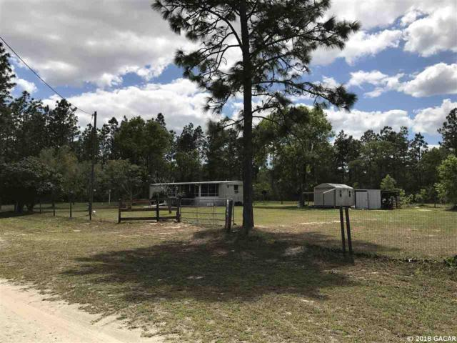 1290 NE 124 Terrace, Williston, FL 32696 (MLS #411931) :: Thomas Group Realty