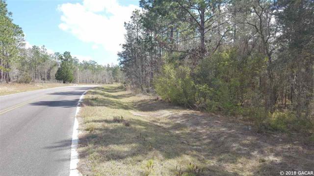 236 Whirlwind Loop, Hawthorne, FL 32640 (MLS #412116) :: Bosshardt Realty