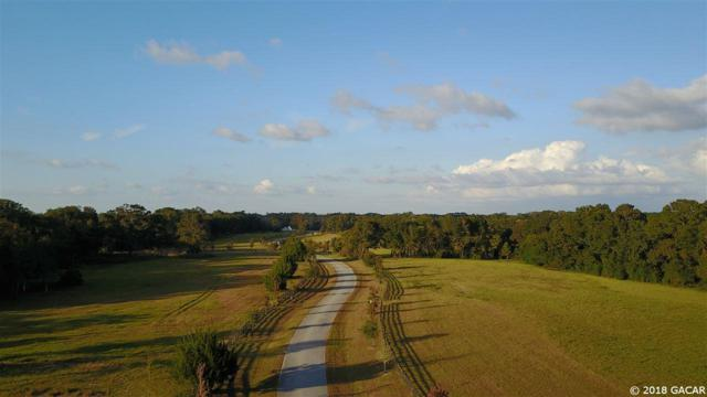 Lot 19 9564 NW 208th Terrace, Alachua, FL 32615 (MLS #412159) :: Thomas Group Realty