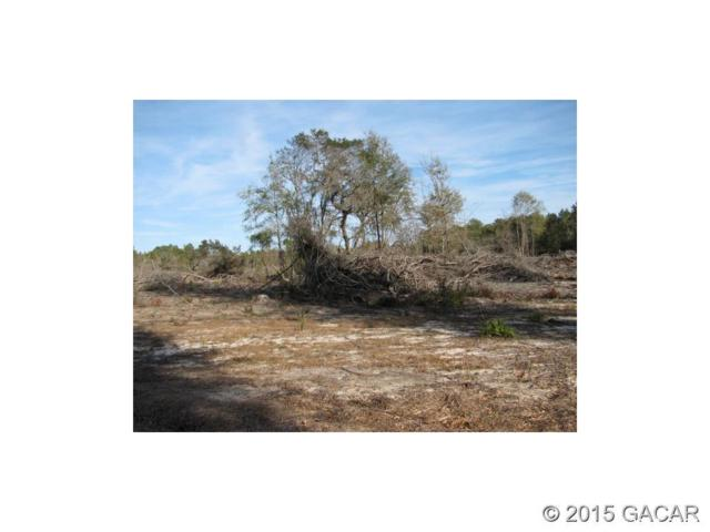 Lot 22 NW 35th Avenue, Branford, FL 32008 (MLS #412702) :: Bosshardt Realty