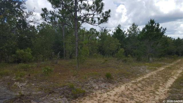 0000 SW 59th Avenue, Interlachen, FL 32148 (MLS #413103) :: Florida Homes Realty & Mortgage