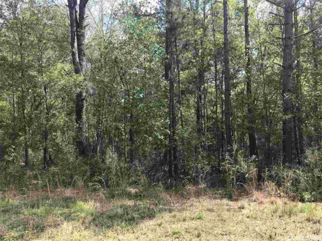 TBD SW 102nd Avenue, Worthington Springs, FL 32697 (MLS #413280) :: Bosshardt Realty