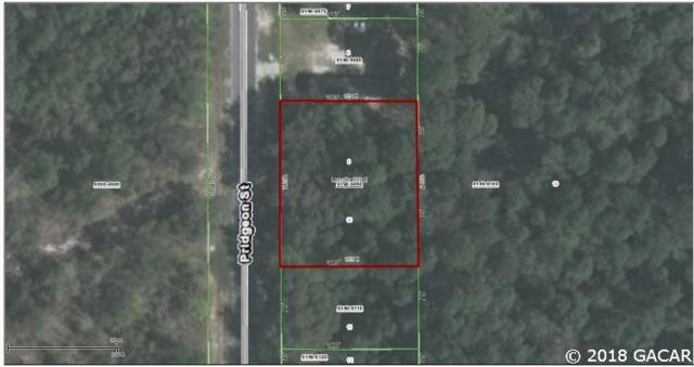 00 Pridgeon Street, Interlachen, FL 32148 (MLS #413289) :: OurTown Group