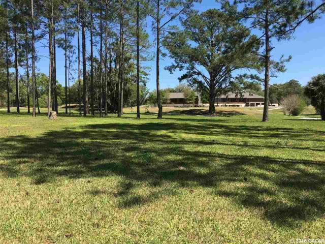 11043 NW Creek Drive, Alachua, FL 32615 (MLS #413563) :: Bosshardt Realty