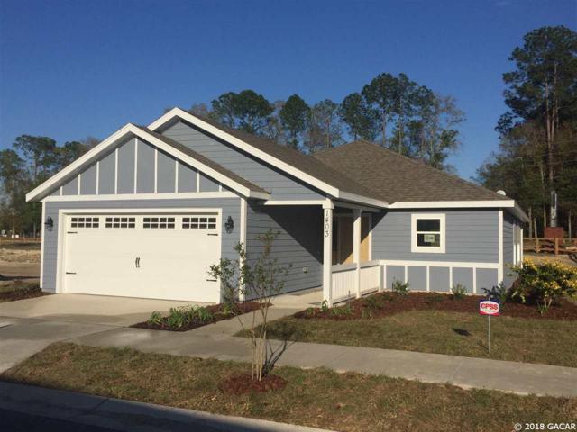1403 SW 251st Way, Newberry, FL 32669 (MLS #413702) :: Thomas Group Realty