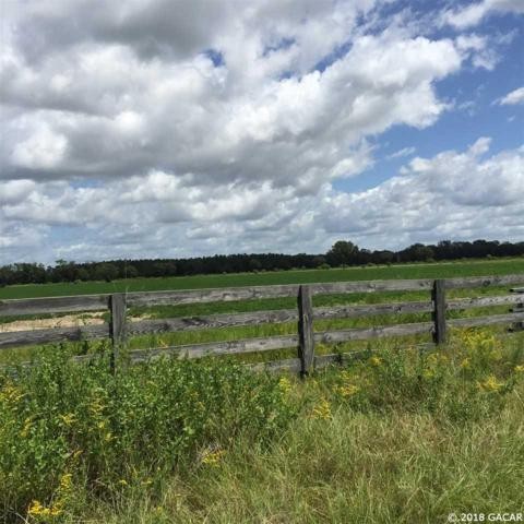 00 SW County Road (Cr) 232 Road, Trenton, FL 32693 (MLS #413842) :: Thomas Group Realty
