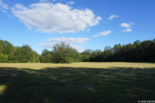 15502 NW 32nd Avenue, Jonesville, FL 32669 (MLS #413973) :: Bosshardt Realty