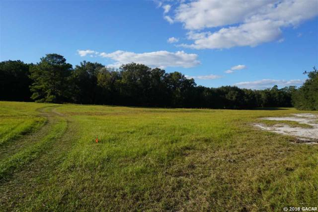 15502 NW 32nd Avenue, Jonesville, FL 32669 (MLS #413977) :: Bosshardt Realty