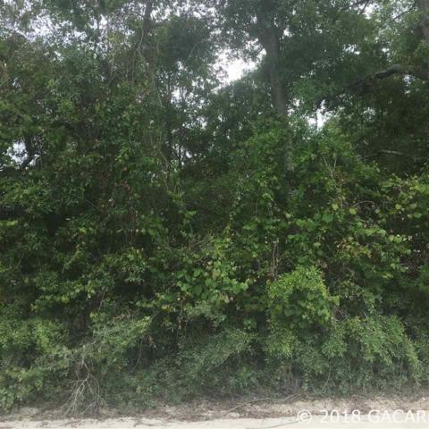 TBD NW 214th Terrace, High Springs, FL 32643 (MLS #414161) :: Bosshardt Realty