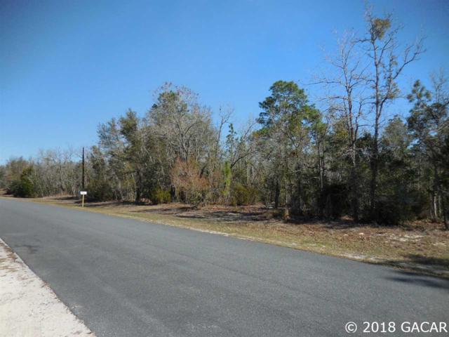 Tbd NE 137th Terrace, Williston, FL 32696 (MLS #414288) :: Thomas Group Realty