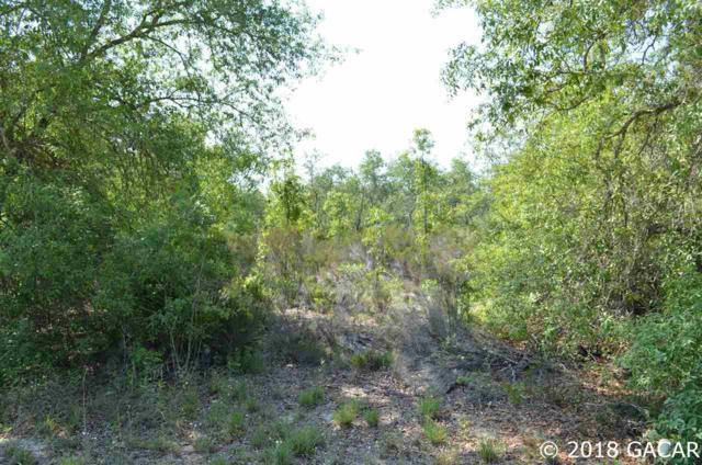 NE 93 Lane, Bronson, FL 32621 (MLS #414842) :: Pristine Properties