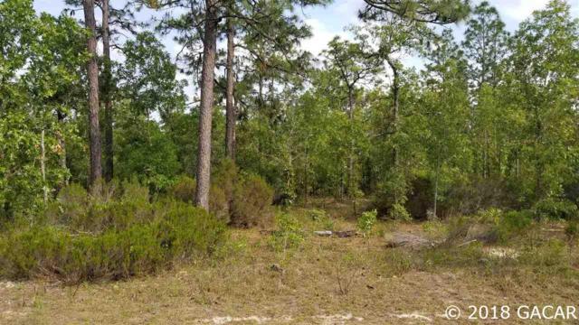 000 Whirlwind Loop, Hawthorne, FL 32640 (MLS #415045) :: Thomas Group Realty