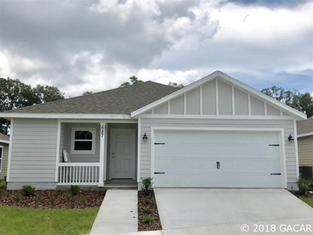 25110 SW 7th Lane, Newberry, FL 32669 (MLS #415706) :: Abraham Agape Group
