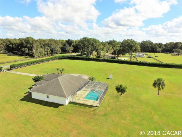 650 NE 95TH, Ocala, FL 34479 (MLS #416218) :: Thomas Group Realty