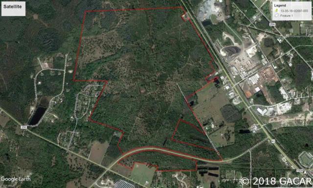 NW Bascom Norris Dr & Us Hwy 41, Lake City, FL 32055 (MLS #416952) :: Rabell Realty Group