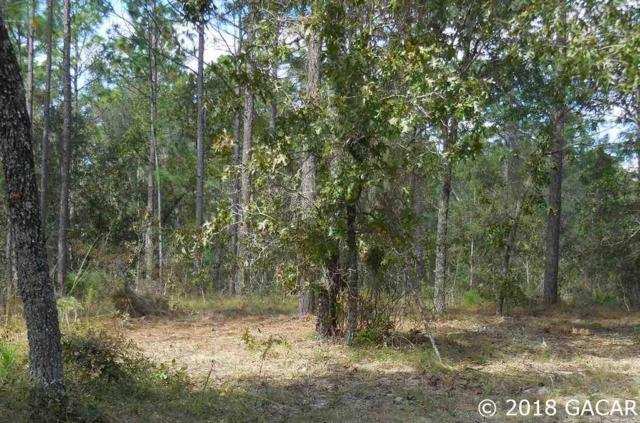 tbd SE 31st Lane, Morriston, FL 32668 (MLS #417323) :: Bosshardt Realty