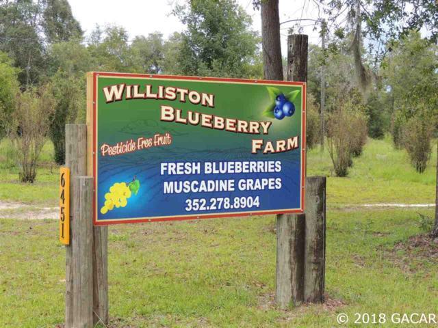6451 NE 137 Court, Williston, FL 32696 (MLS #417707) :: Pepine Realty