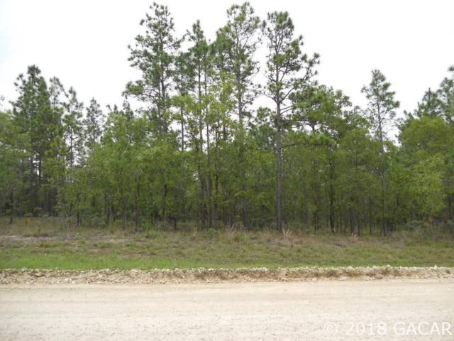 TBD NE 5th Street, Williston, FL 32696 (MLS #417901) :: Rabell Realty Group